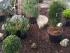 Bilder Gartencenter Tirol