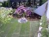 Bilder Gartengestaltung Tirol - Pflanzen Mair